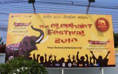 2010 Elephant Festival billboard