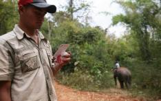Mahout checking mobile unit emergency contact card